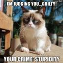 grumpy_cat_pro
