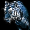 Its_The_Tigeress
