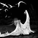 fallen_angel9955
